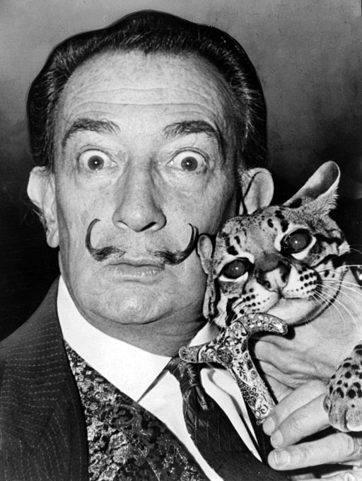 Salvador Dali  Art