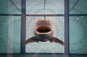 The Weird World of Damien Hirst