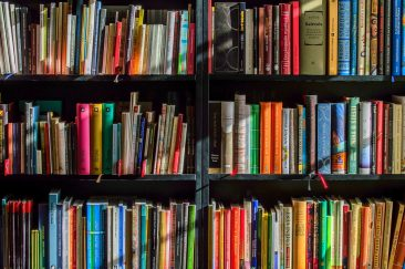 Online Library vs. Authors: Internet Archives Threatened by Authors