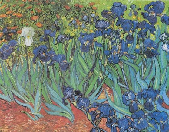 Vincent van Gogh Irish