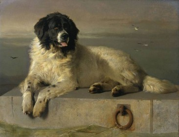 THE DOG PORTRAITS OF EDWIN HENRY LANDSEER, 19TH CENTURY ENGLISH PAINTER