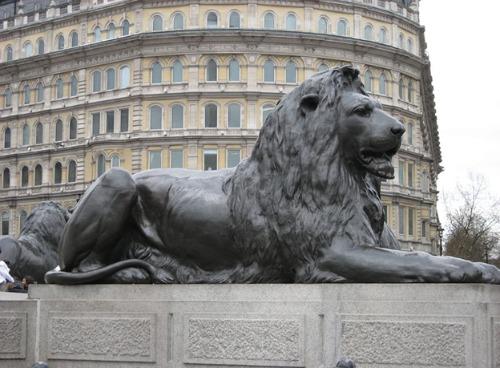 Lion nelson column trafalgar london uk