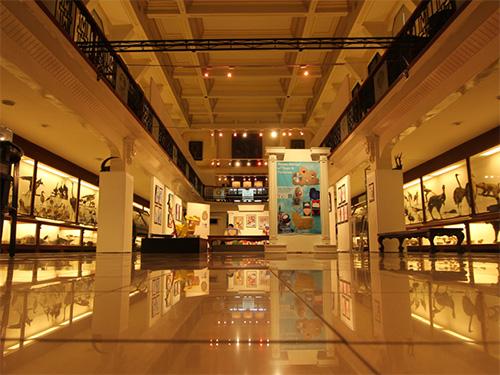 University of Santo Tomas Museum of Arts and Sciences
