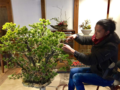 Bonsai rewarding hobby