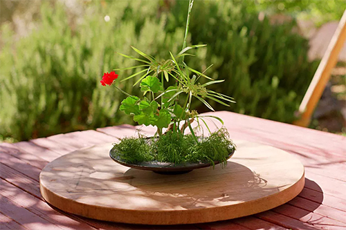 The Ikebana style